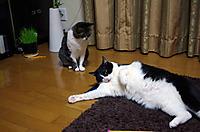 2012_02_01_1910_edited1_2