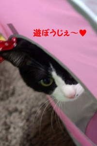 2012_03_21_3063_edited1_2