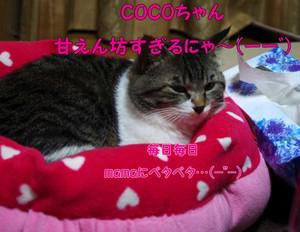 2012_03_24_3185_edited1