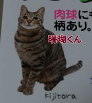 2012_04_14_3840_edited1_2