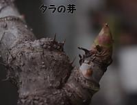 2012_04_14_3823_edited1_3