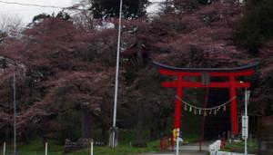 2012_04_19_3906_edited2