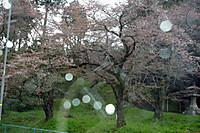 2012_04_19_3908_edited1