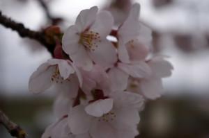 2012_04_22_3999_edited1