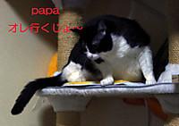 2012_04_26_4109_edited1