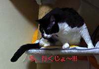 2012_04_26_4110_edited1