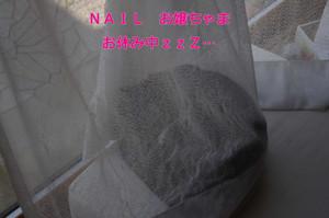 2012_05_31_5022_edited1_2