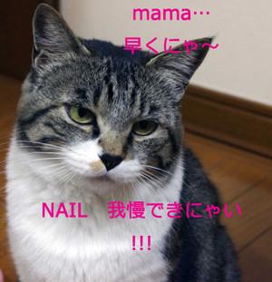 2012_05_31_5028_edited1