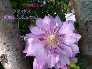 2012_06_05_5161_edited1