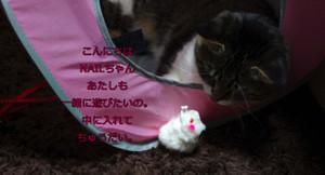 2012_06_22_5540_edited1