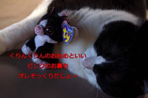 2012_06_26_5594_edited1