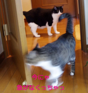 2012_07_07_5934_edited1