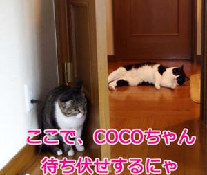 2012_07_07_5935_edited1