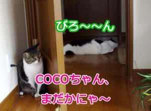 2012_07_07_5936_edited1