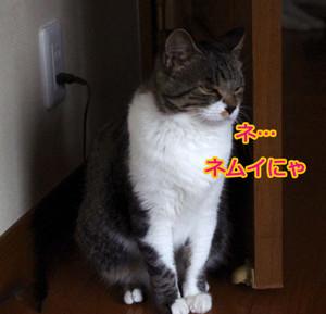 2012_07_07_5939_edited1