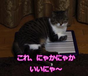 2012_07_08_5951_edited1
