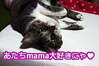 2012_07_05_5901_edited1