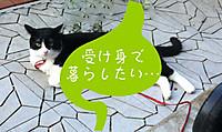 2012_08_05_6897_edited1
