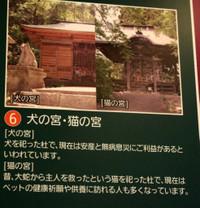 2012_08_05_6843_edited1