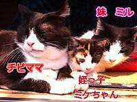 2012_05_13_4654_edited2