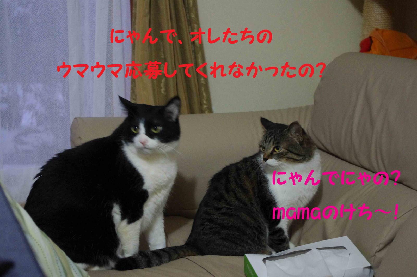 2012_02_04_1959_2
