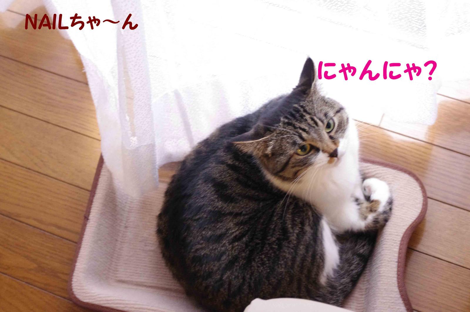 2012_02_07_2043_edited1_2