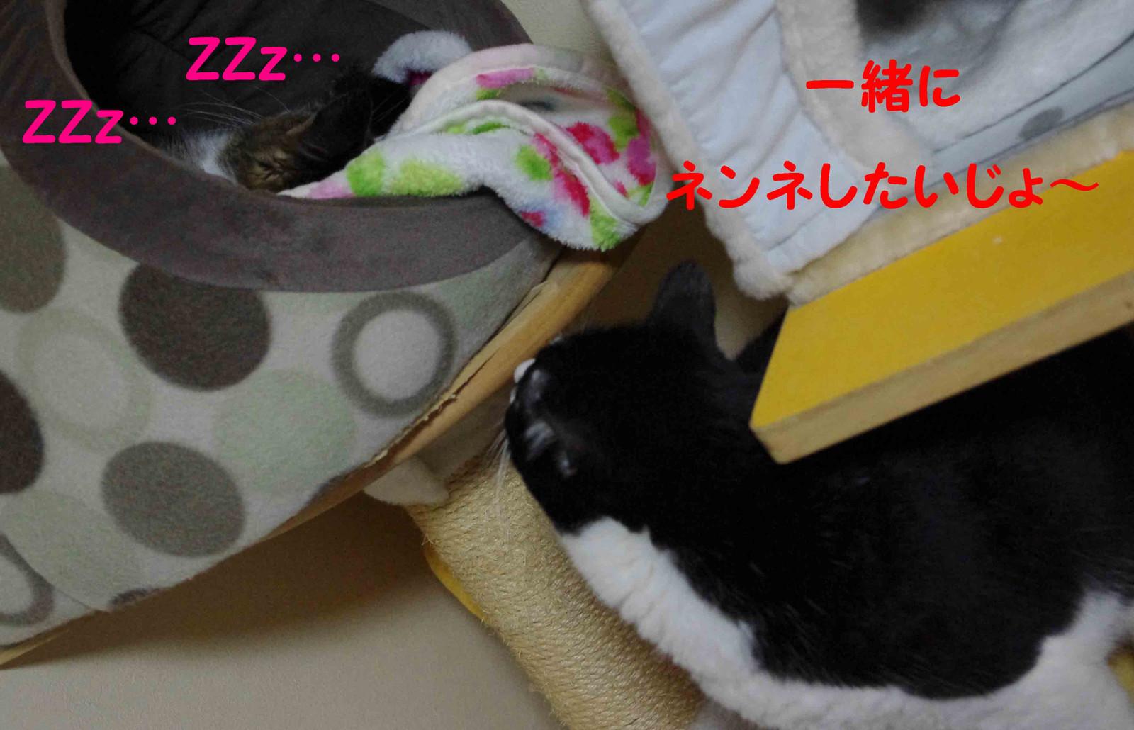 2012_02_11_2144_edited1_2