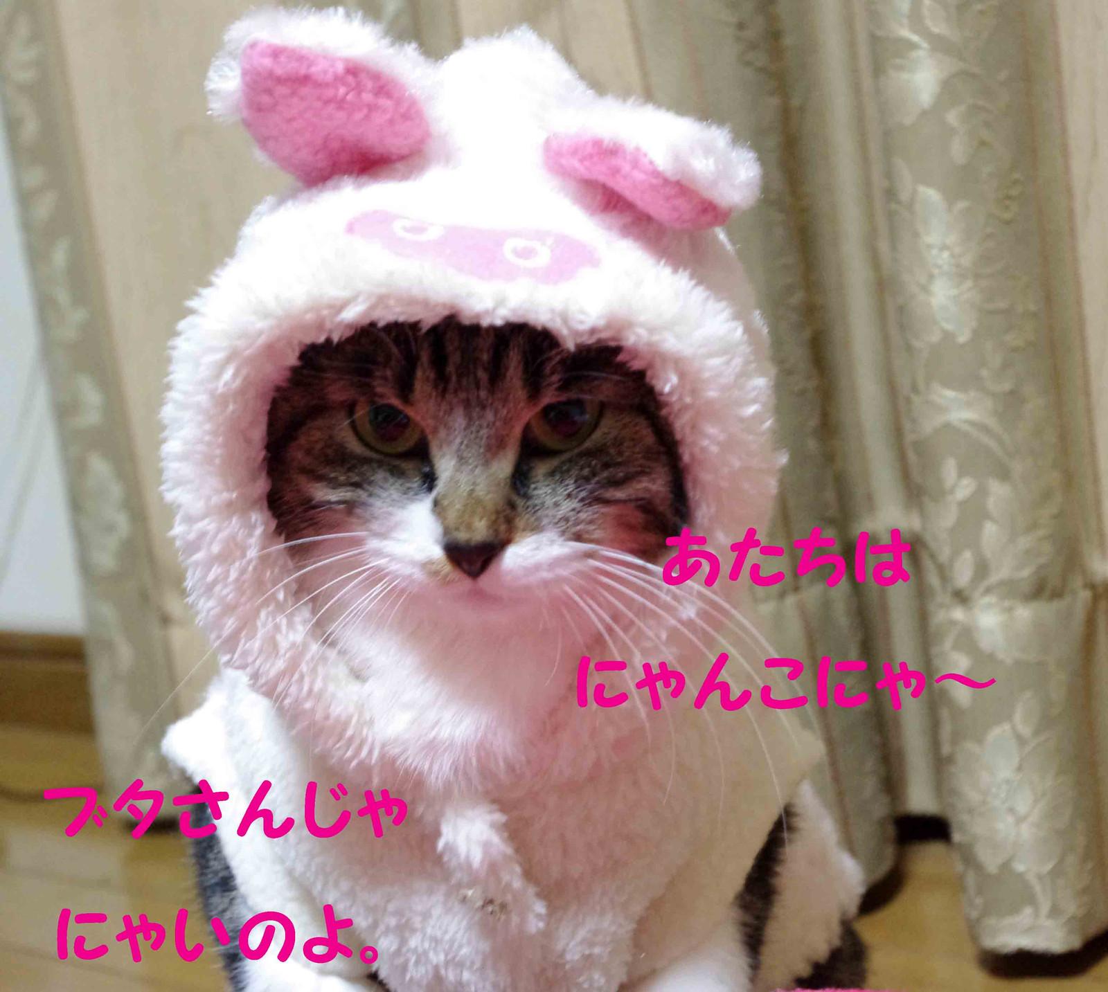 2012_02_15_2200_edited1