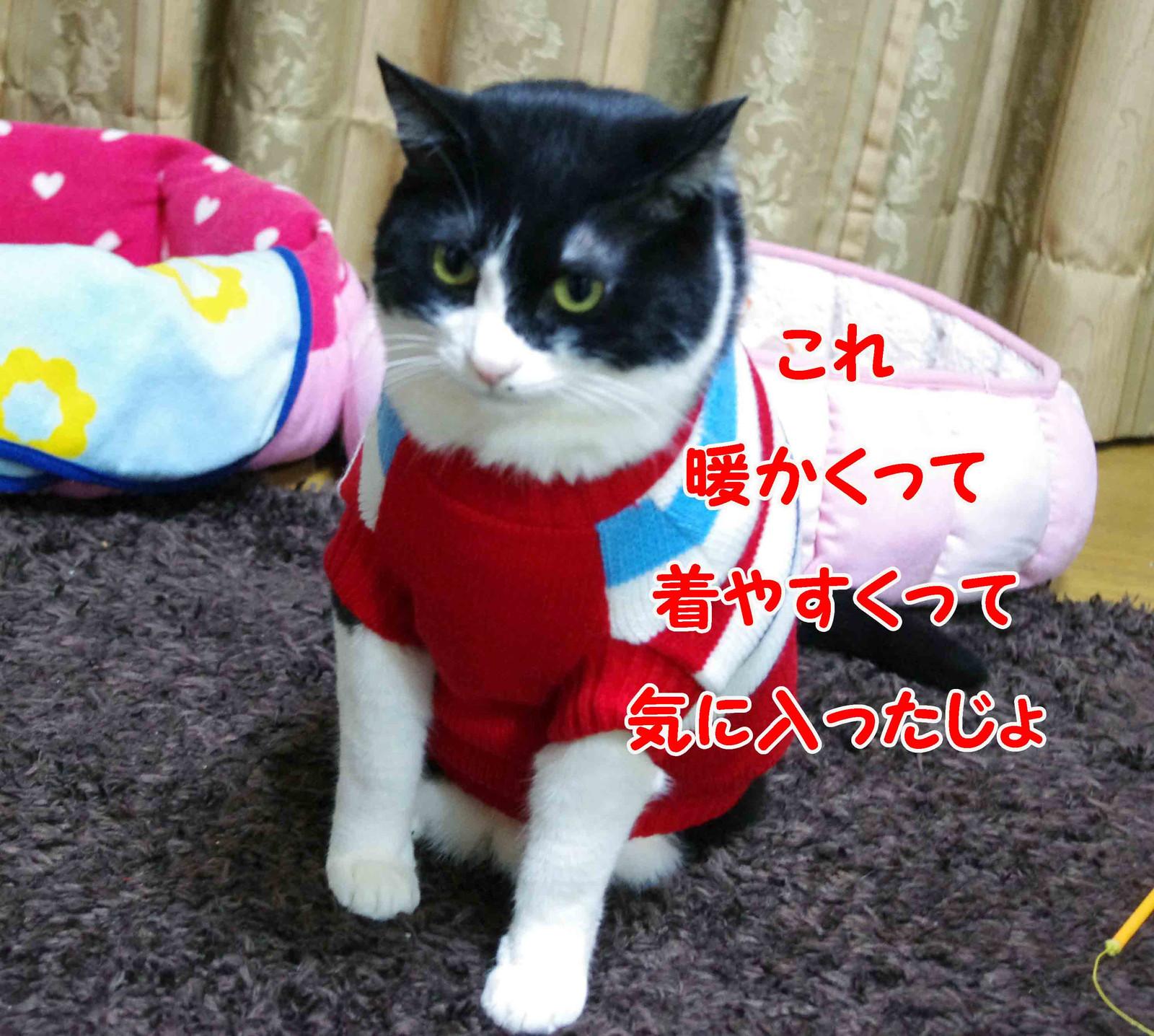 2012_02_19_2310_edited1_2