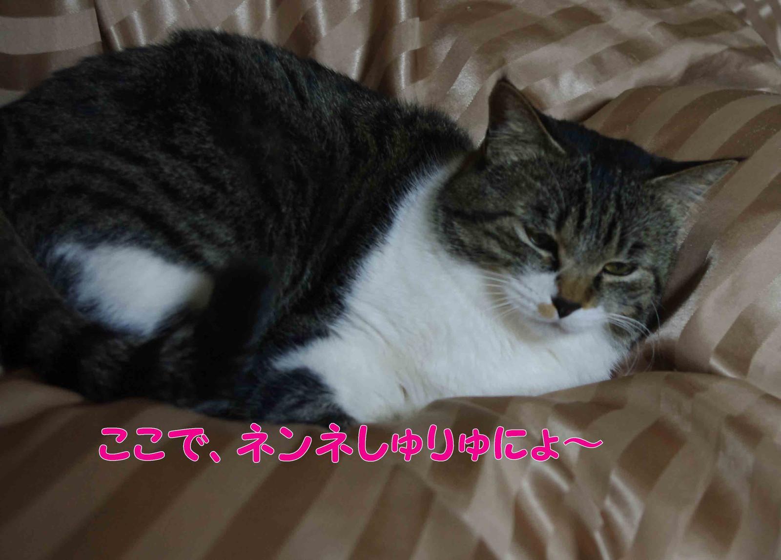 2012_02_21_2318_edited1