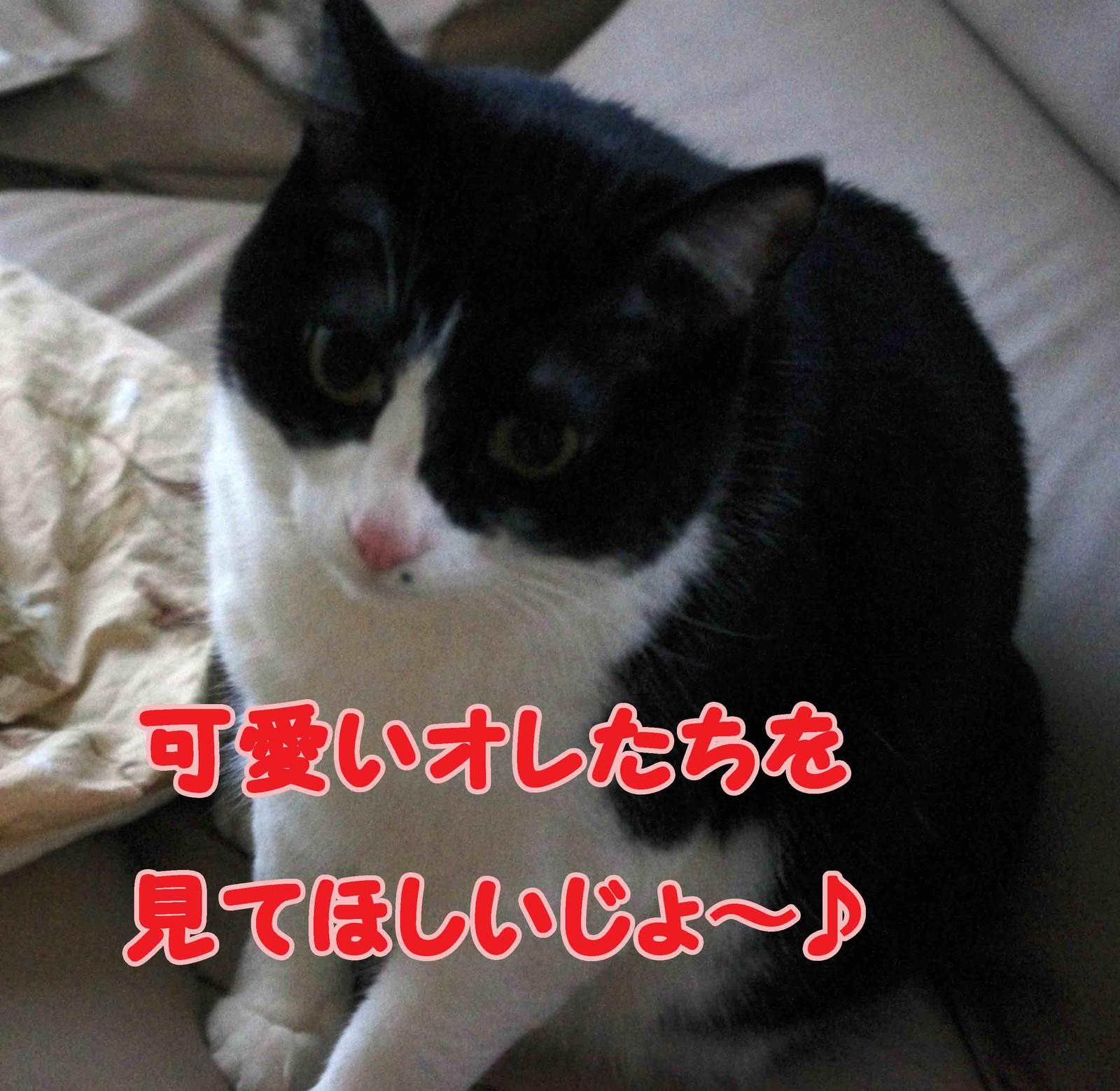 2012_02_23_2344_edited1