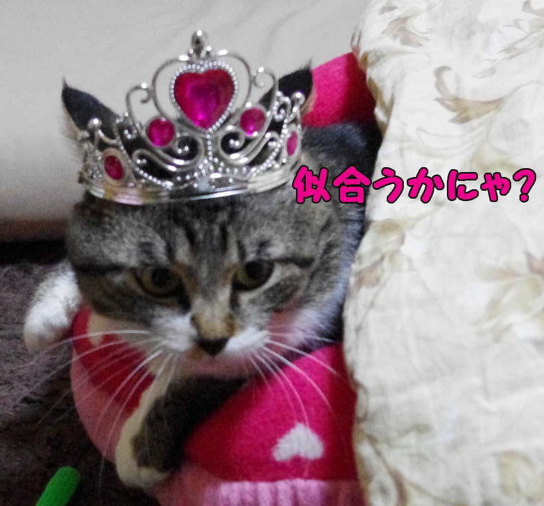 2012_03_11_2701_edited1