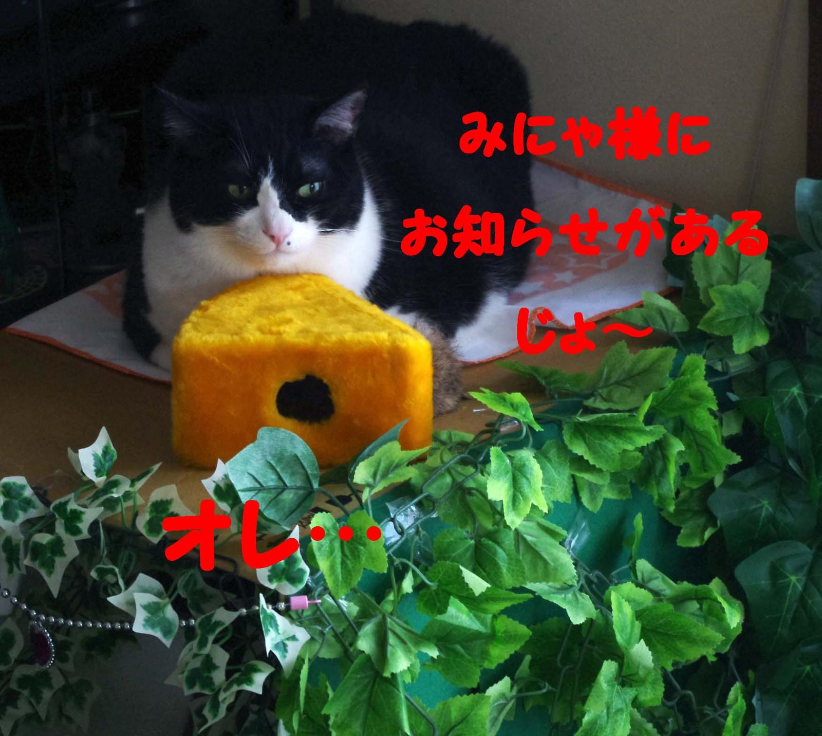 2012_03_21_3101_edited1