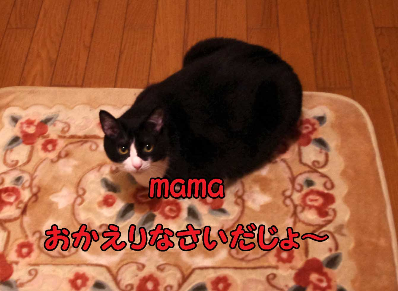 2012_04_14_3836_edited1