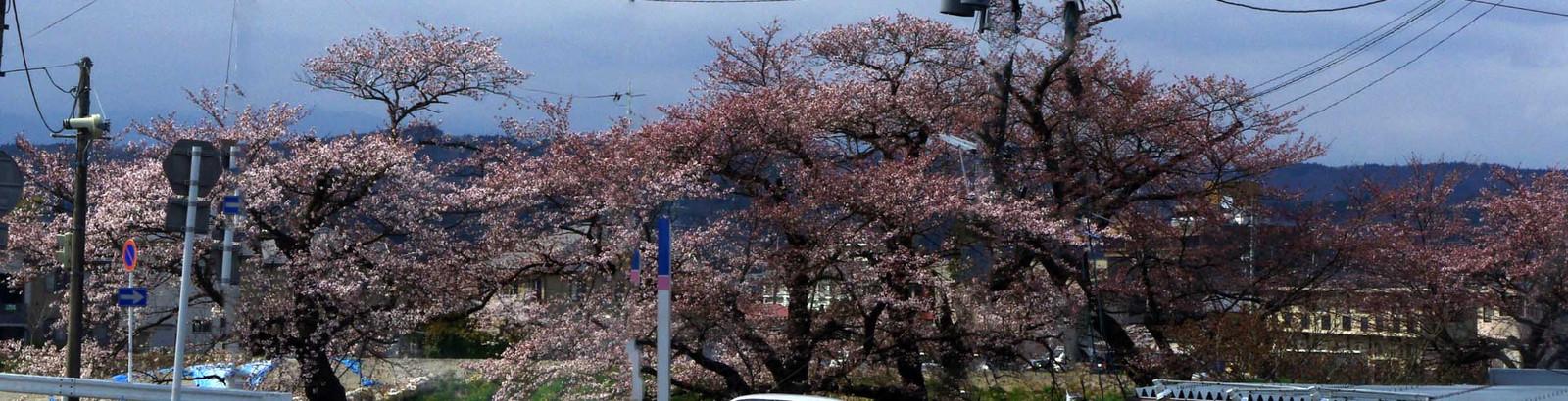 2012_04_21_3949_edited1
