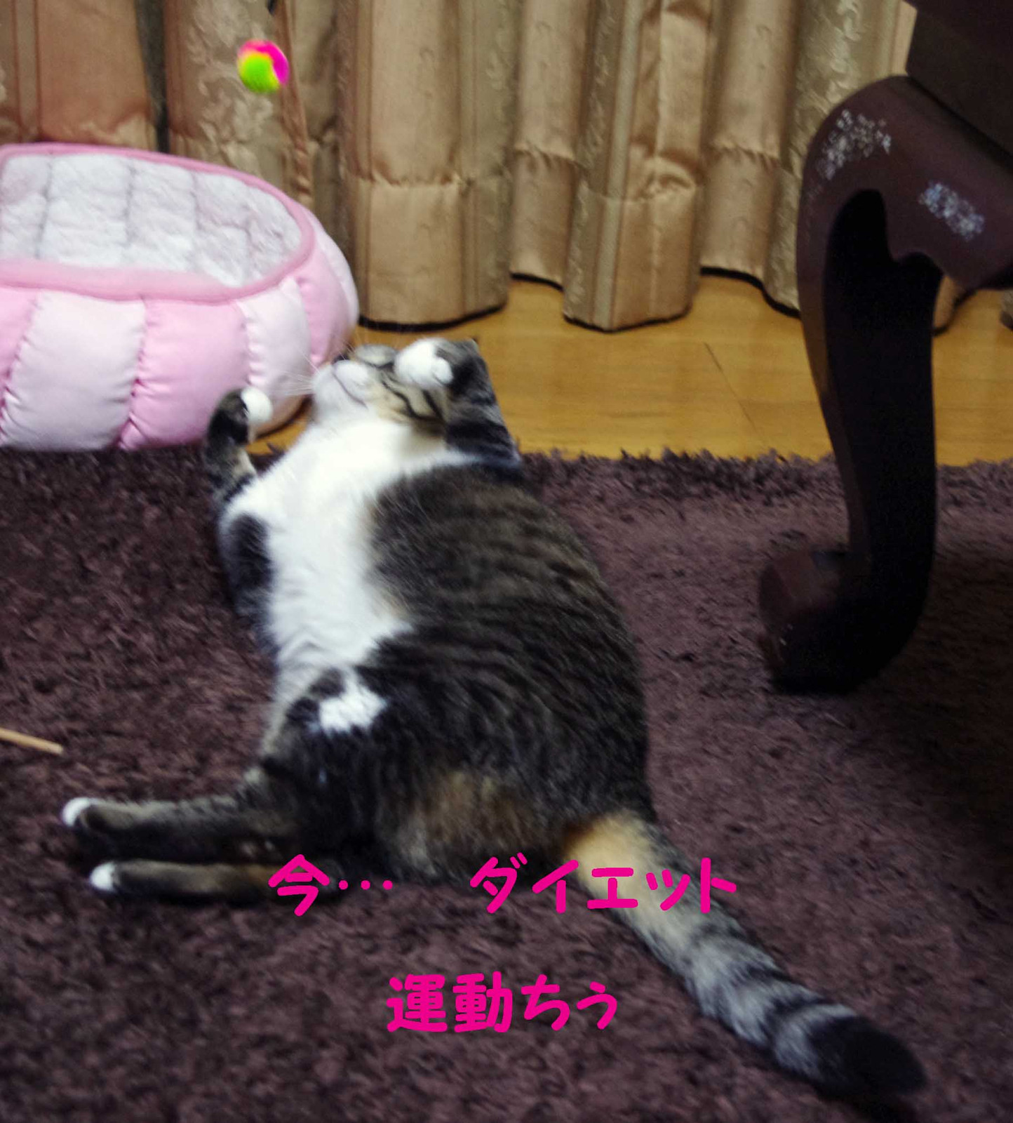 2012_04_22_3965_edited1