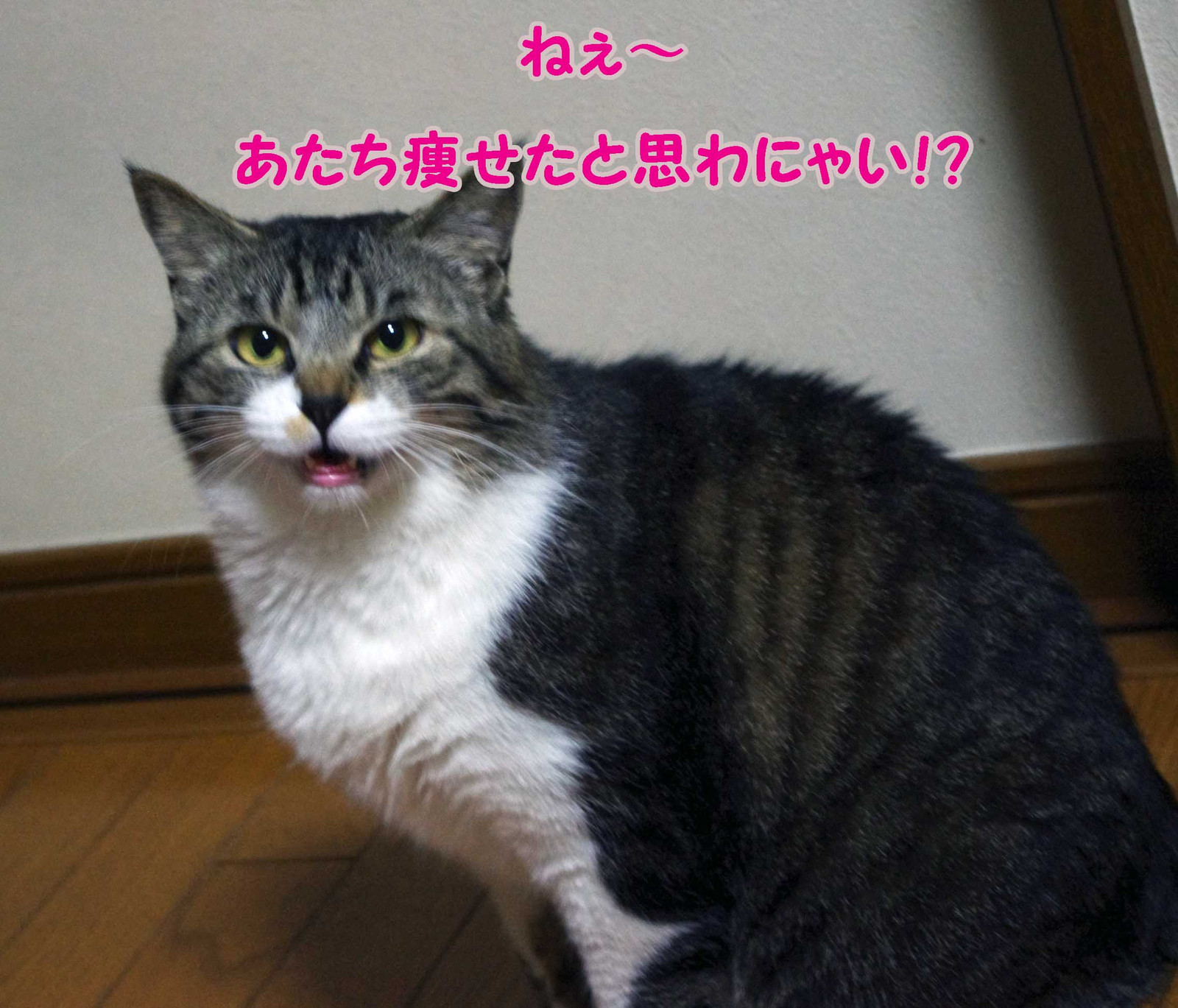 2012_04_23_4016_edited1
