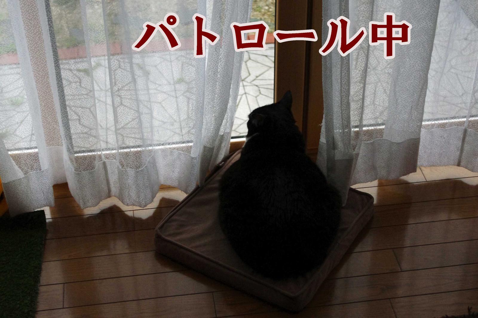 2012_04_26_4092_edited1