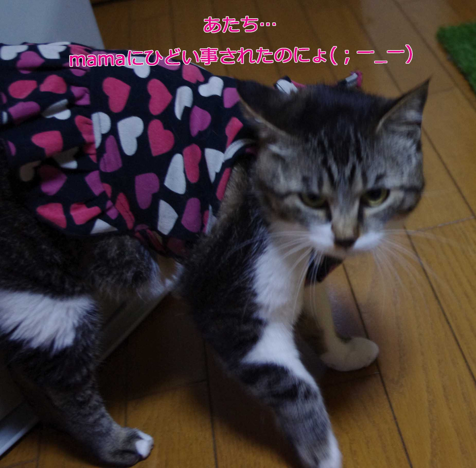 2012_04_29_4370_edited1