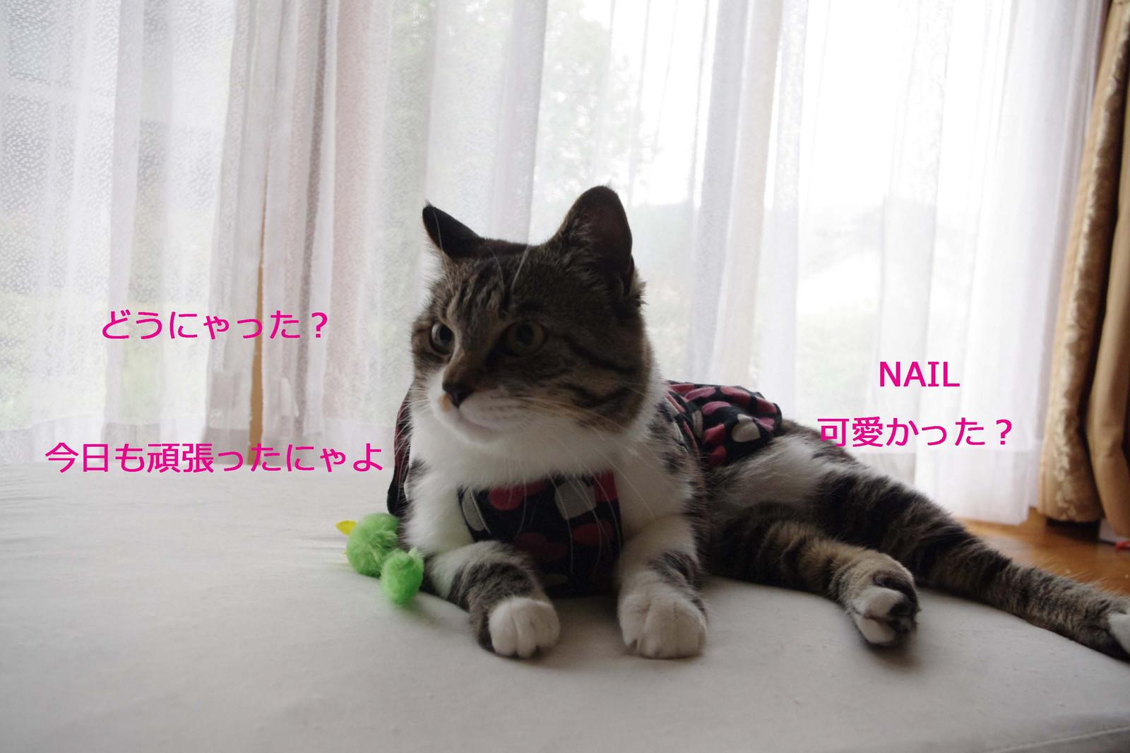 2012_06_09_5250_edited1