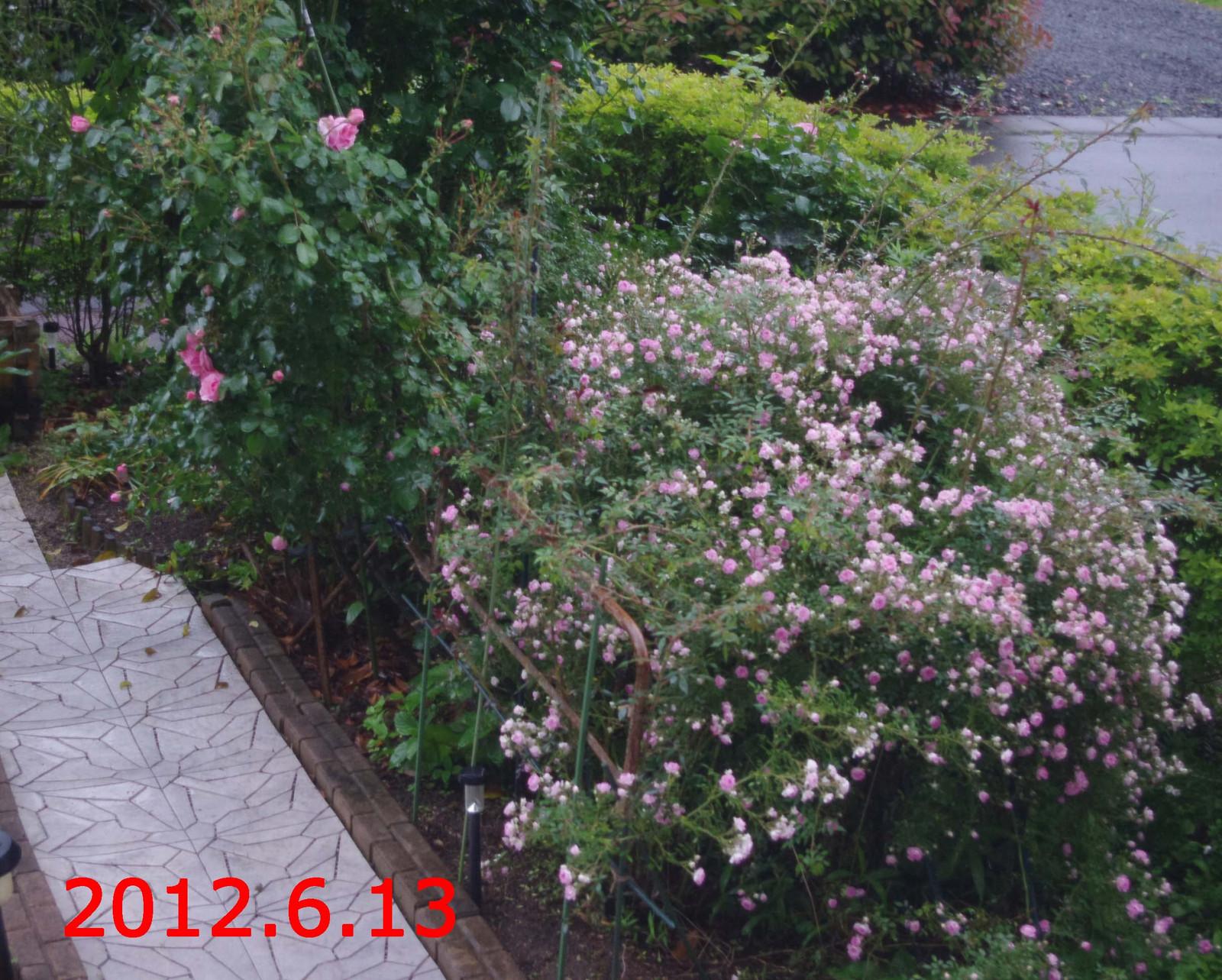 2012_06_13_5353_edited1