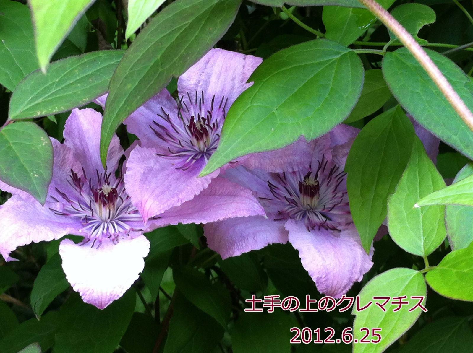 2012_06_27_5663_edited1