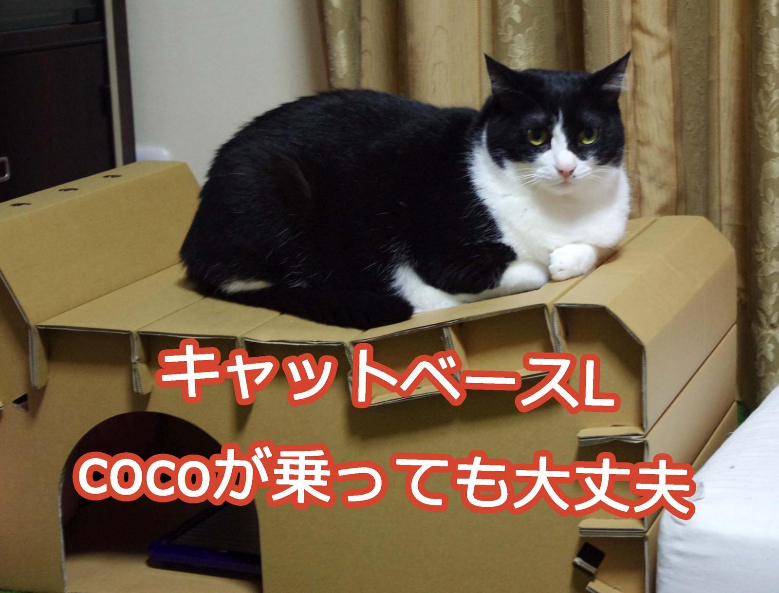 2012_07_14_6170_edited1