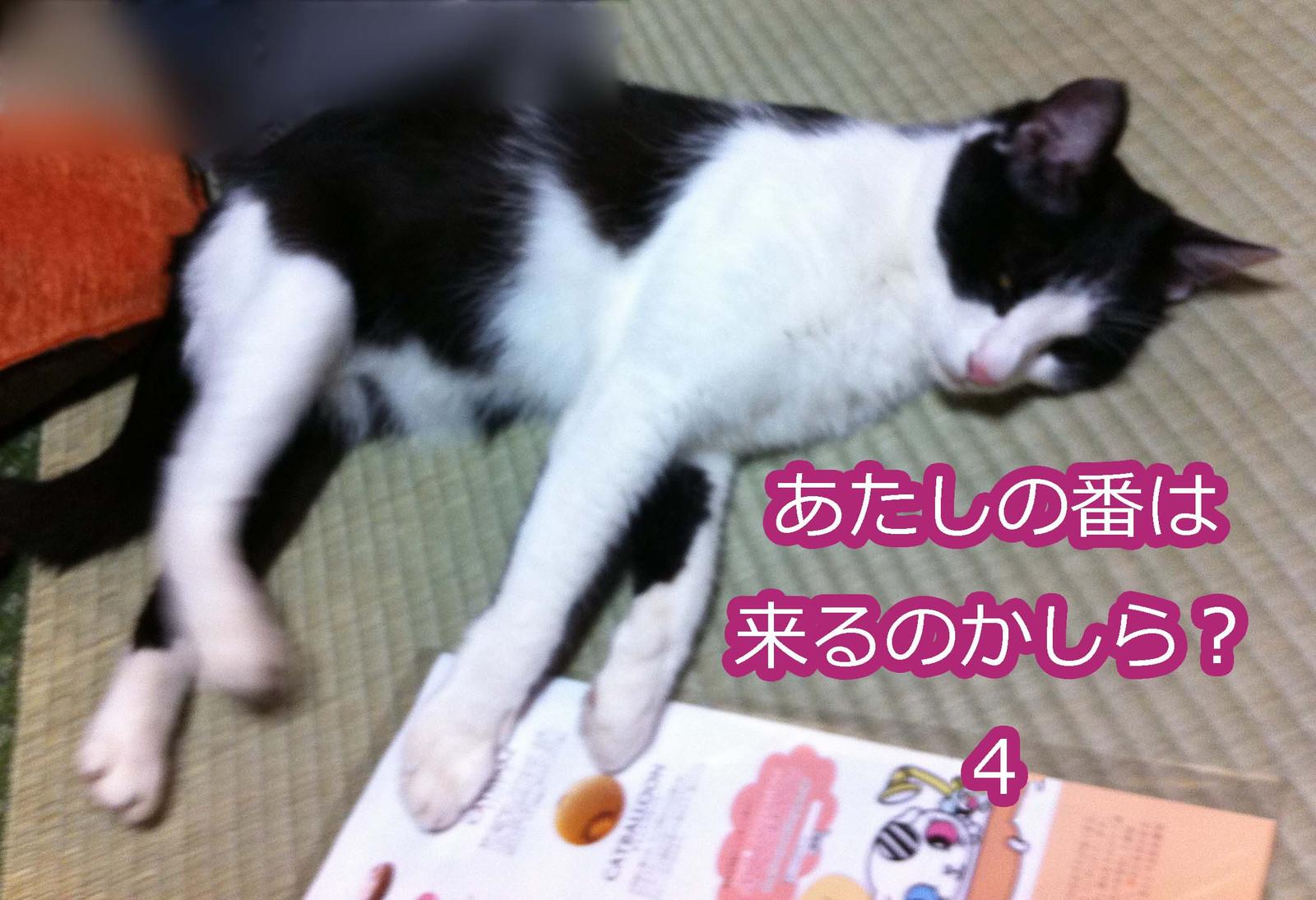 2012_07_28_6554_edited1