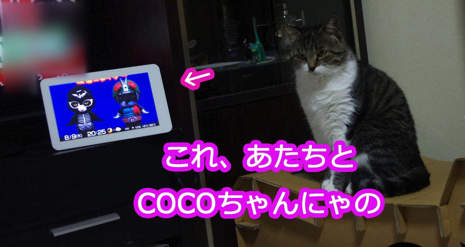 2012_08_09_6997_edited1
