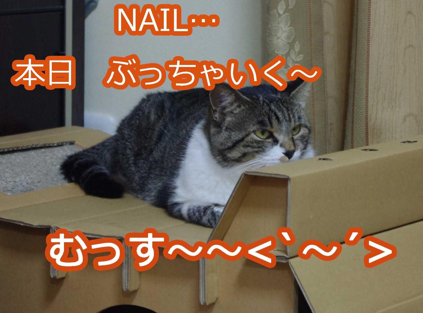 2012_08_21_7790_edited1